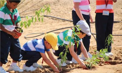 In this picture, we see five children dressed in striped shirts. Two of them are bent over and reaching for a plant sapling, presumably planting them in the ground. In the background, the other children standing..