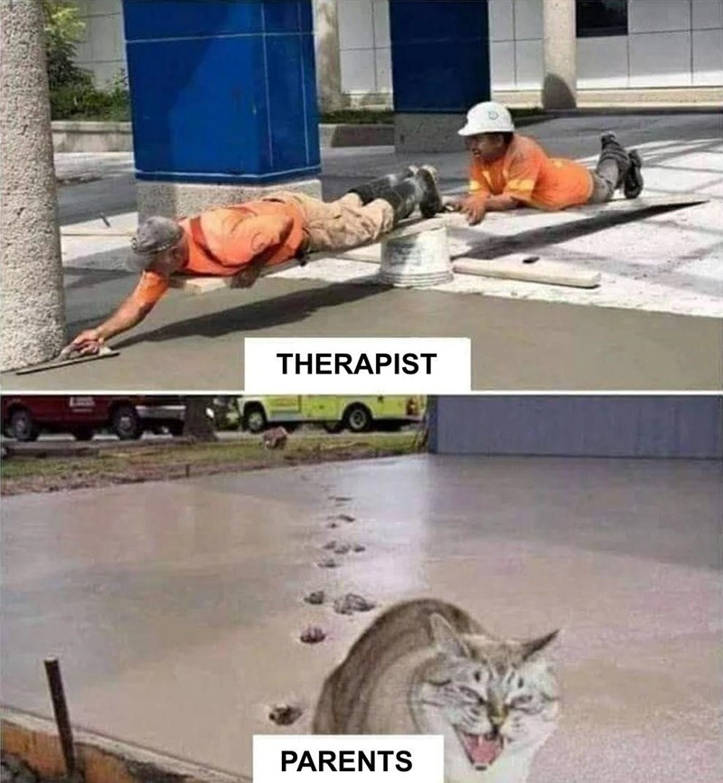 A meme about the damage that parents do to the work that therapists do.