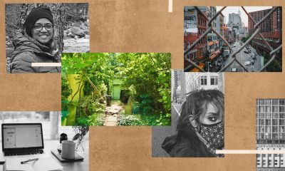 Images of Mimi Mondal, Vandana Singh, a sky view of New York and a picture of a garden in India