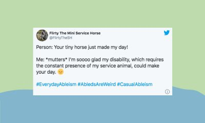 "An image of a tweet by FlirtyTheSH about service animals which reads ""Person: Your tiny horse just made my day! Me: *mutters* I'm soooo glad my disability, which requires the constant presence of my service animal, could make your day."""